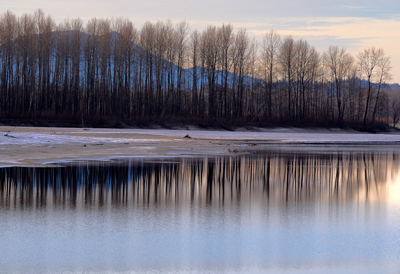 Early morning light on the Fraser at Agassiz
