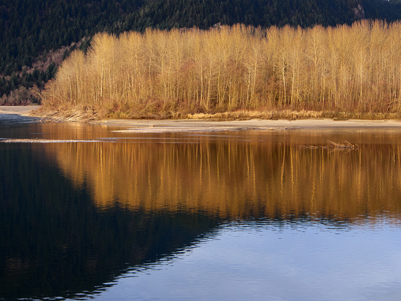 Evening light on the Fraser River at Island 22
