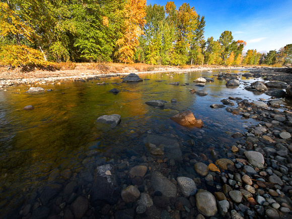 Autumn colour along the Coldstream River outside of Merritt