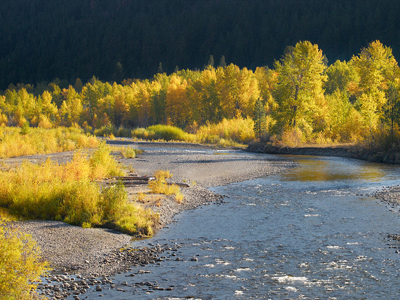 Autumn colour along the Nicola River
